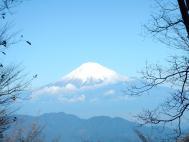 欅立山より