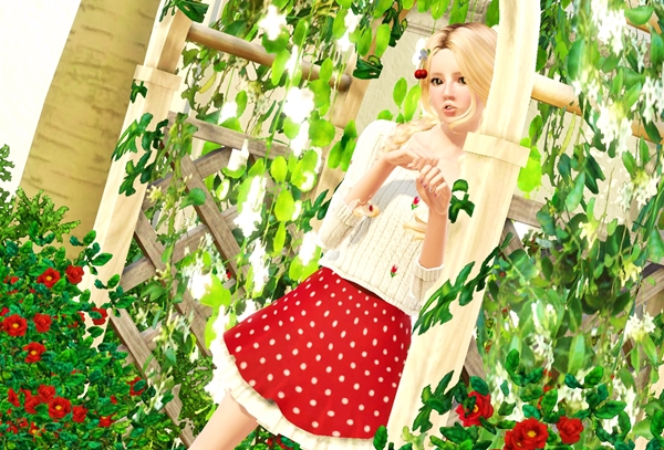 cherry03.jpg
