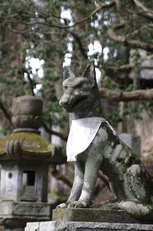 三峯神社・お犬様