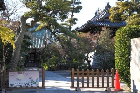 2011-10-08 華0893