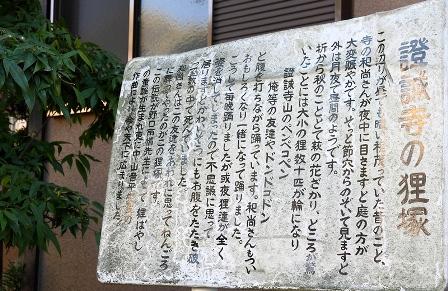 2011-10-08 華0963