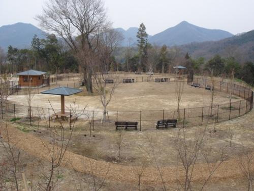 讃岐まんのう公園 15