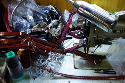 IMGP7745.jpg