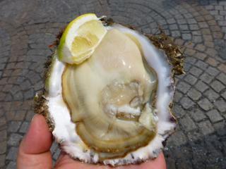 岩牡蠣 2