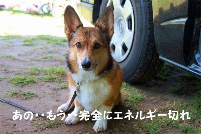 309_20121001213956.jpg