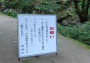 神庭の滝 (6)