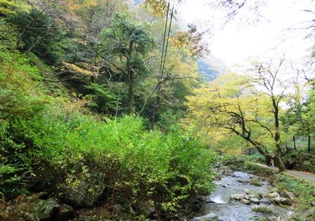 神庭の滝 (9)
