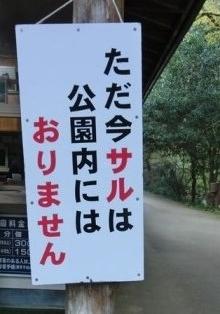 神庭の滝 (7)