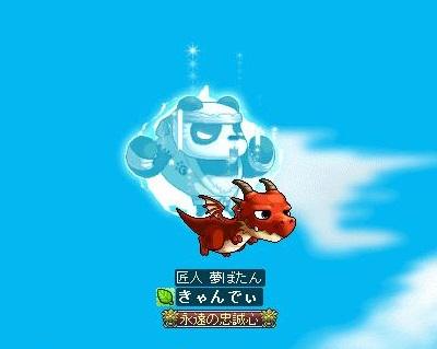 Maple120507_091832.jpg