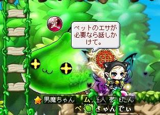 Maple120524_160951.jpg