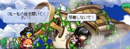 Maple120601_173238.jpg