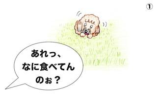 Oscar 1 jp JPG