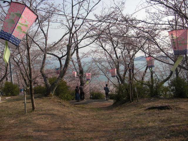 正福寺山公園山頂