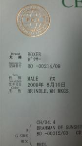 2011081022320000.jpg