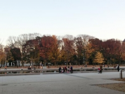 秋の上野公園 噴水広場