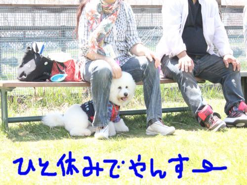 5_20110530152147.jpg