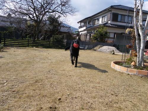 3_20120304150236.jpg