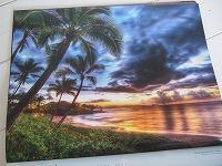 20101101ハワイのお土産 002