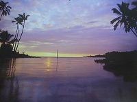 20101101ハワイのお土産 003