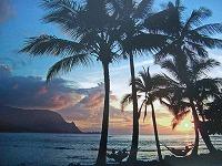20101101ハワイのお土産 004