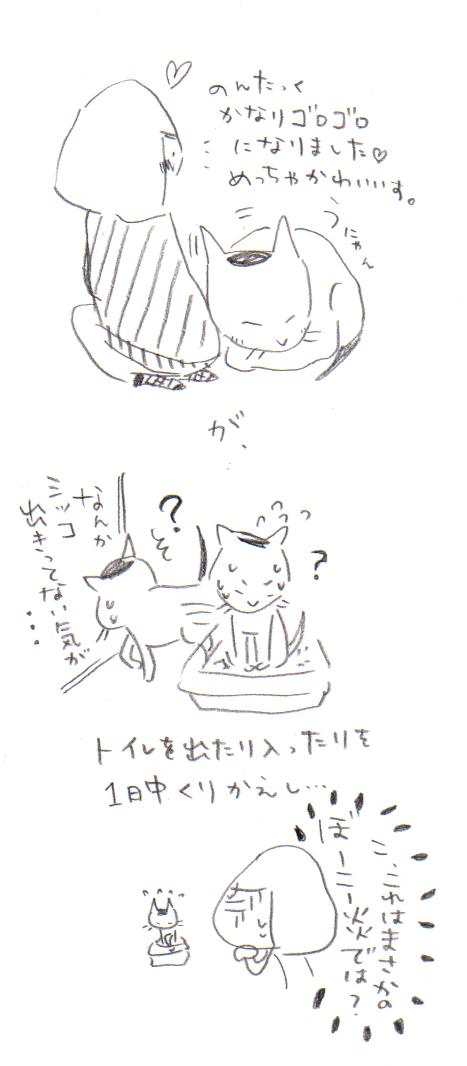 11-4.jpg