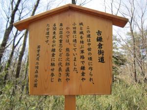 1.森林公園f