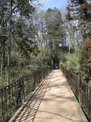 1.森林公園h