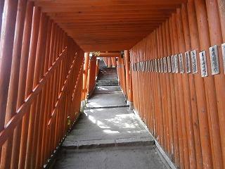 津和野稲荷トンネル