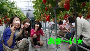 8_20110308172044.jpg