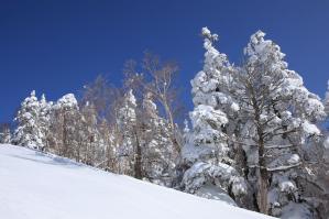 木曽福島スキー場