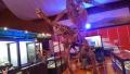 20140808_07首長竜と恐竜4