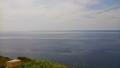 20140810_69礼文島西海岸