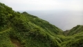 20140810_77礼文島西海岸