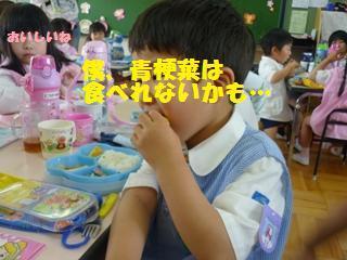 P1020241_20110531083010.jpg