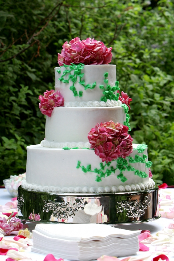 Types Of Cake Decorating : Cake Decorating Ideas: Types of Wedding Cakes herohymab