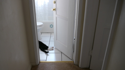 1531_bathroom.jpg