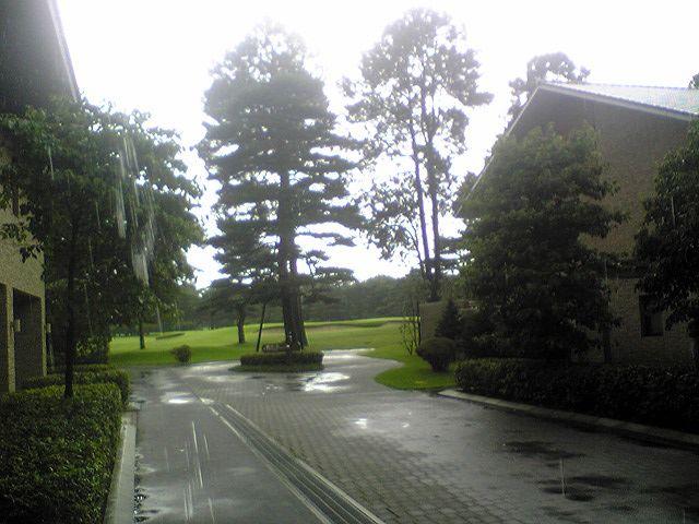 201107195.jpg