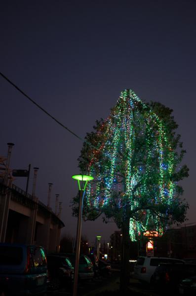 2012_0129AL.jpg