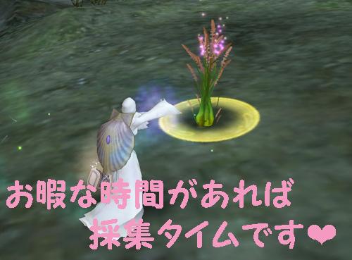 ほりほり(o´ω`o)