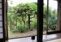 席からの庭の眺め