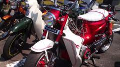 TS3R0350_20121007221529.jpg
