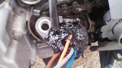 TS3R0362_20121014195510.jpg