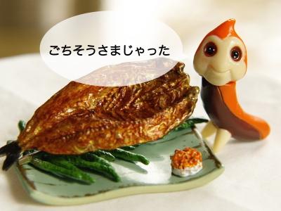 0730魚1