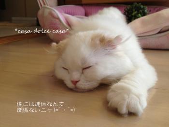 negao_convert_20120507224301.jpg