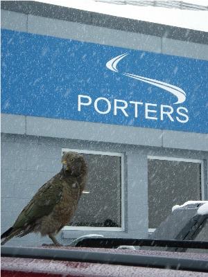 Porters 10