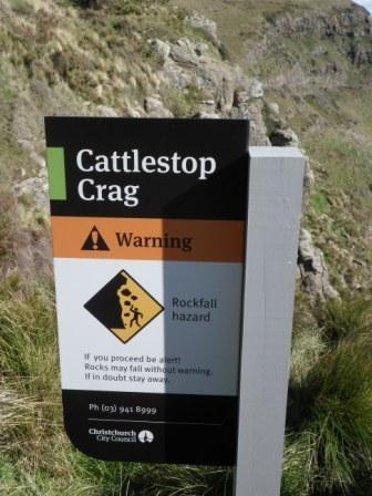 Cattlestop 1