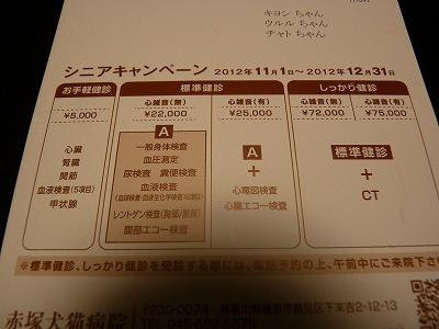 x-P1320438.jpg