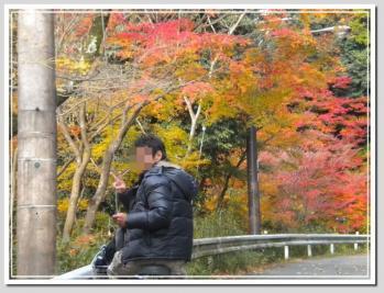 DSCN05672010-11-26eve10.jpg