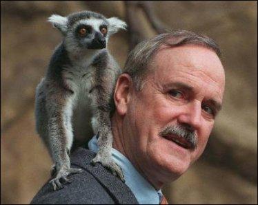 Cleese-lemur.jpg