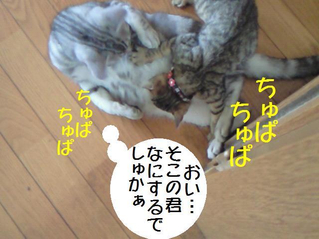 100614_2.jpg